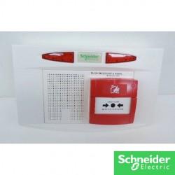 Alarme type 4 Pyros - CCT57371-schneider-electricité pas cher troyes prix usine prise interrupteur disjoncteur